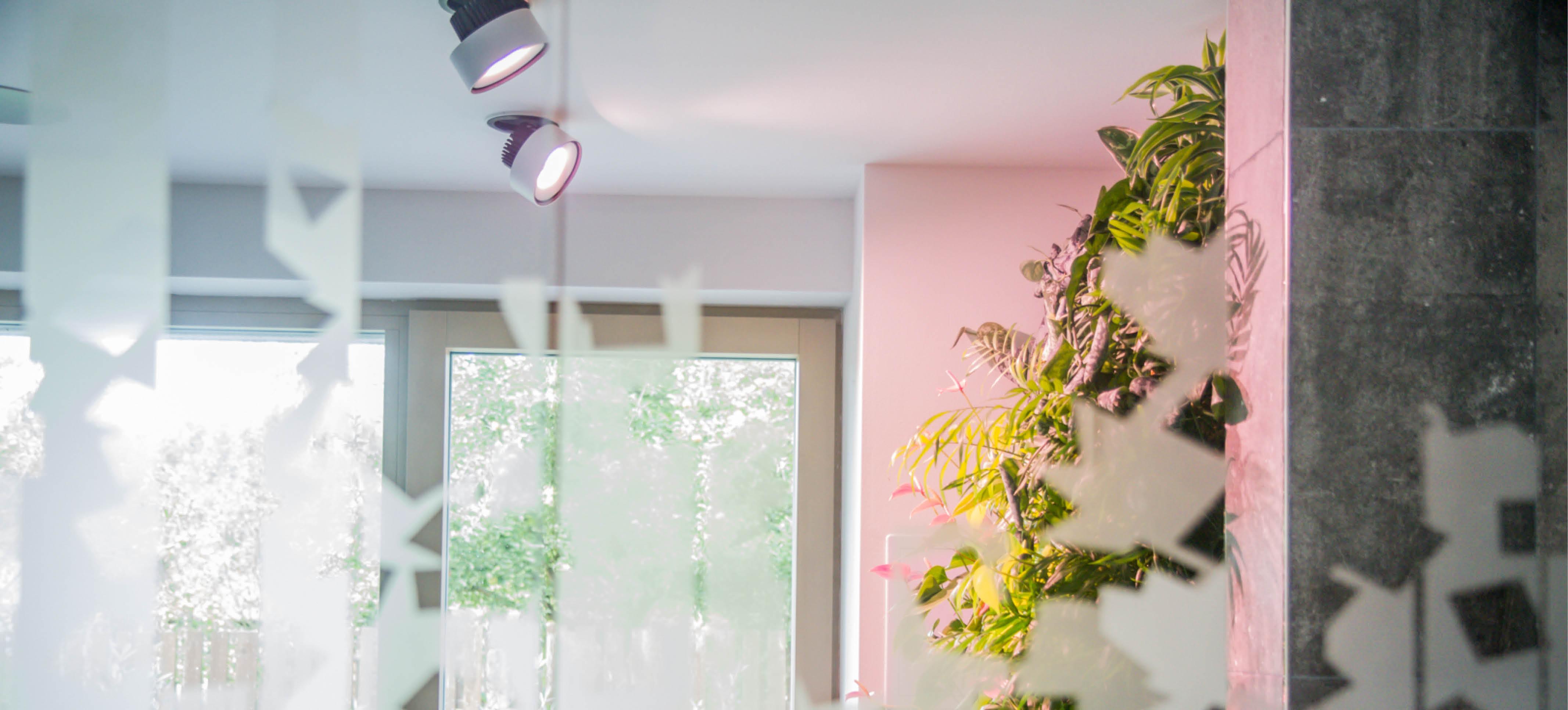 interiér inspirovaný přírodou